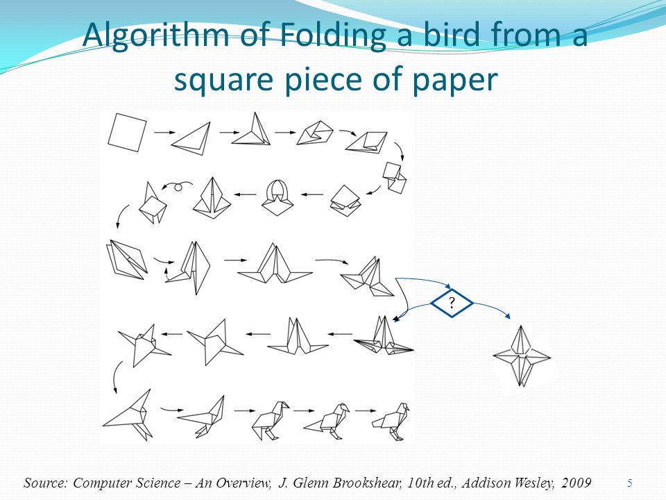 Algorithm of Folding a bird from a square piece of paper