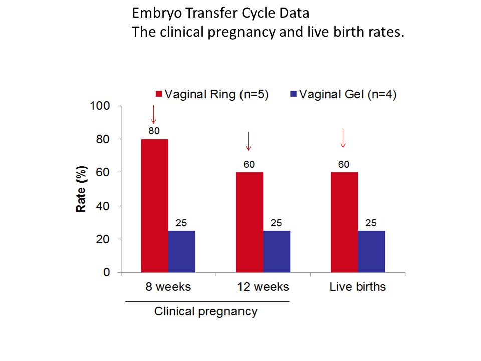 Embryo Transfer Cycle Data