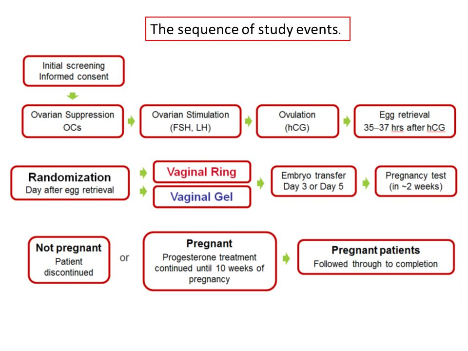 The sequence of study events.