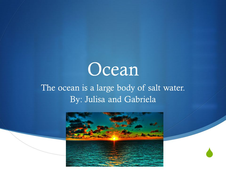 The ocean is a large body of salt water. By: Julisa and Gabriela