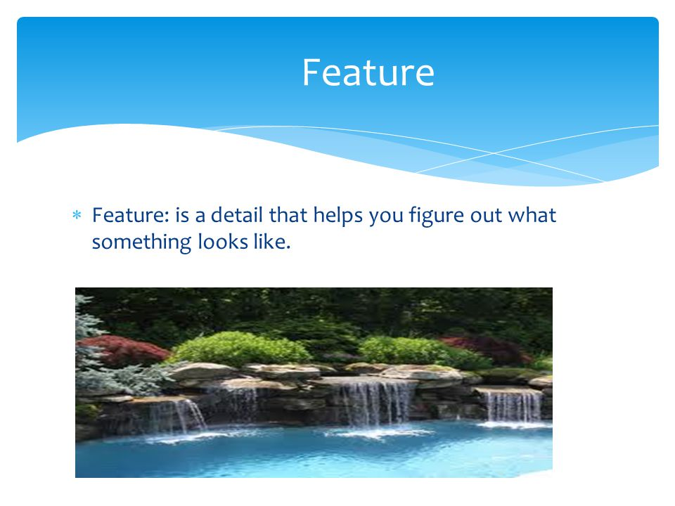 Feature Feature: is a detail that helps you figure out what something looks like.
