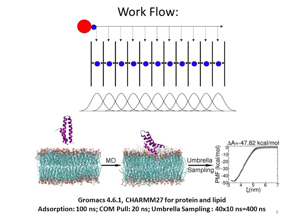 Gromacs 4.6.1, CHARMM27 for protein and lipid
