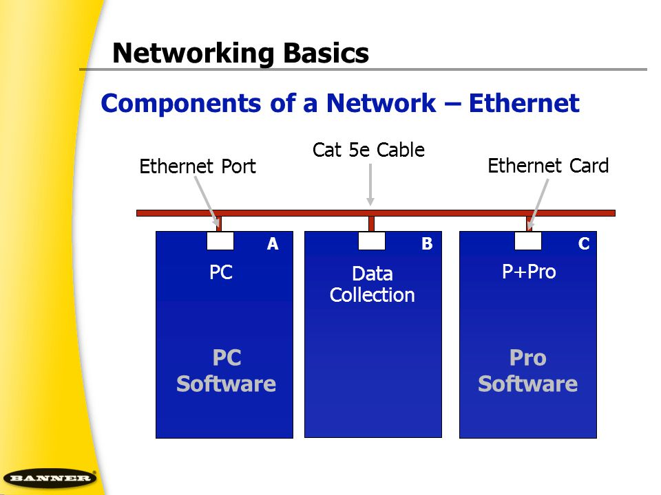 Networking Basics Components of a Network – Ethernet PC Software Pro