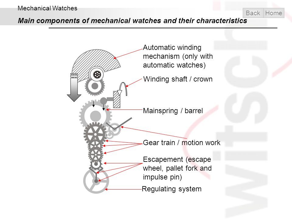 Main components of mechanical watches and their characteristics