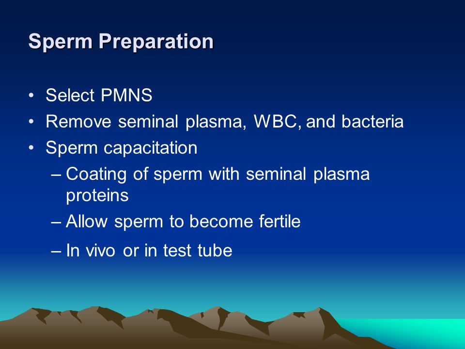 Sperm Preparation Select PMNS Remove seminal plasma, WBC, and bacteria