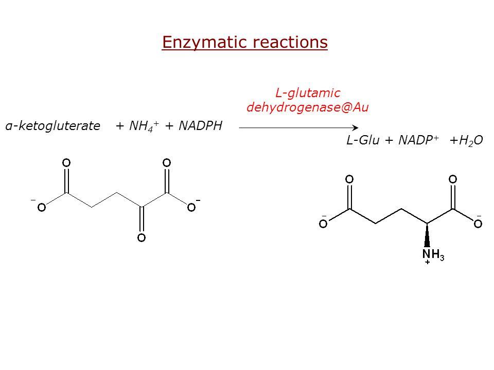 L-glutamic dehydrogenase@Au