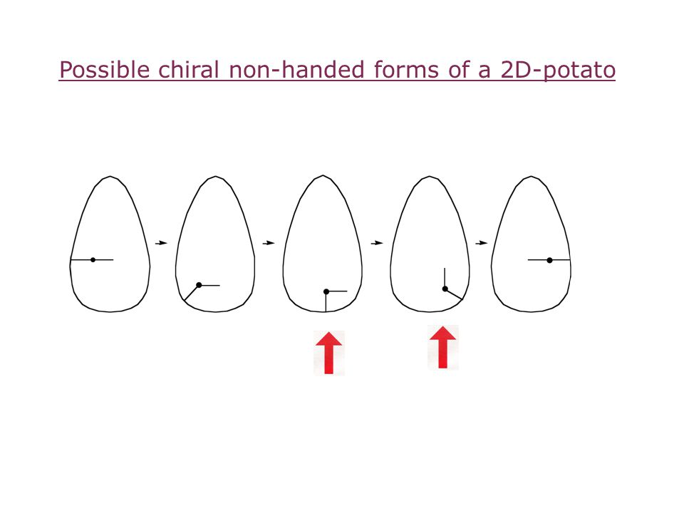 Possible chiral non-handed forms of a 2D-potato