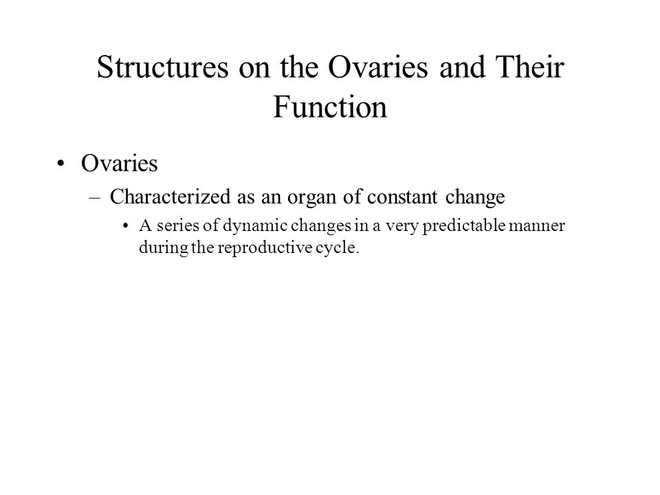 Structures on the Ovaries and Their Function