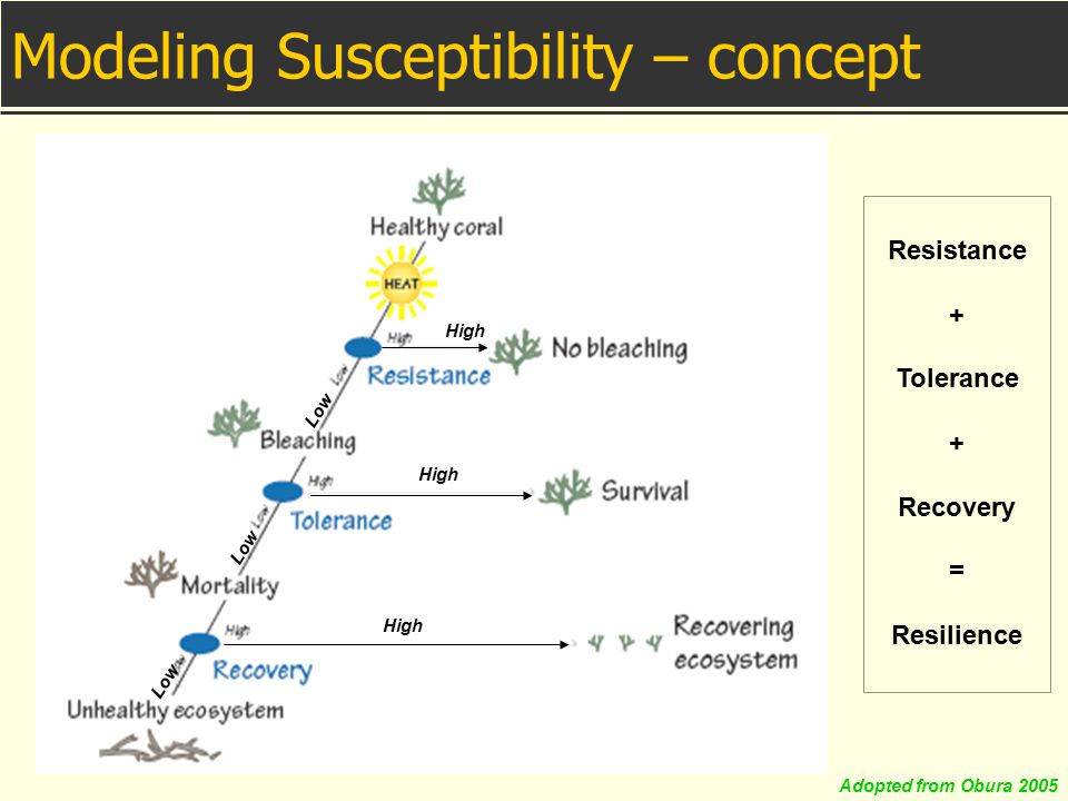 Modeling Susceptibility – concept