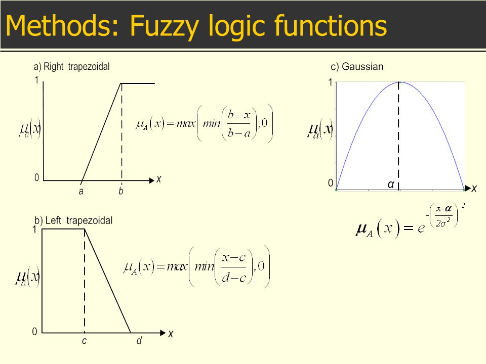 Methods: Fuzzy logic functions