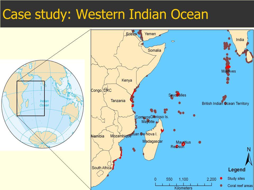 Case study: Western Indian Ocean