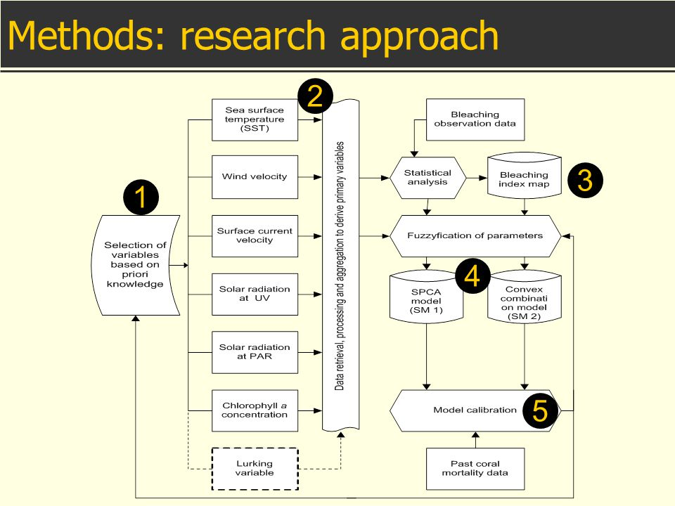 Methods: research approach