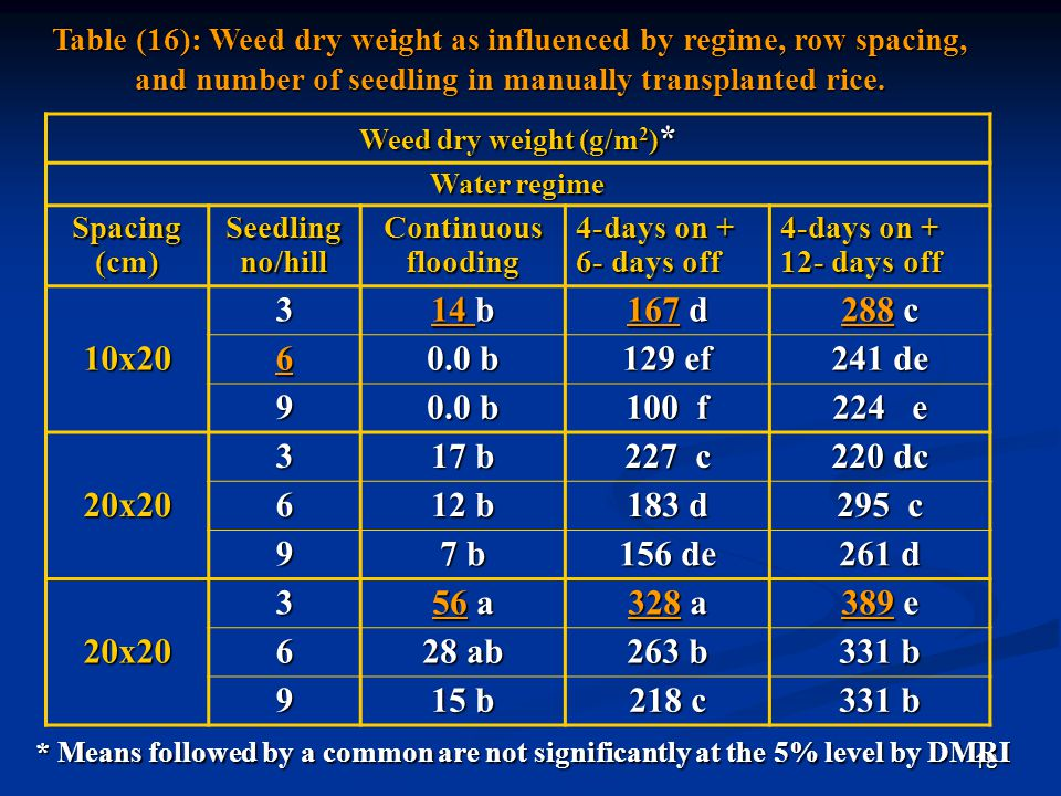 Table (16): Weed dry weight as influenced by regime, row spacing, and number of seedling in manually transplanted rice.