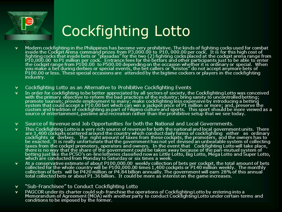 Cockfighting Lotto