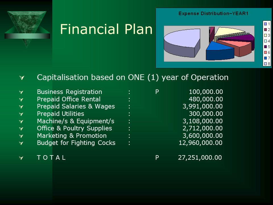 Financial Plan Capitalisation based on ONE (1) year of Operation