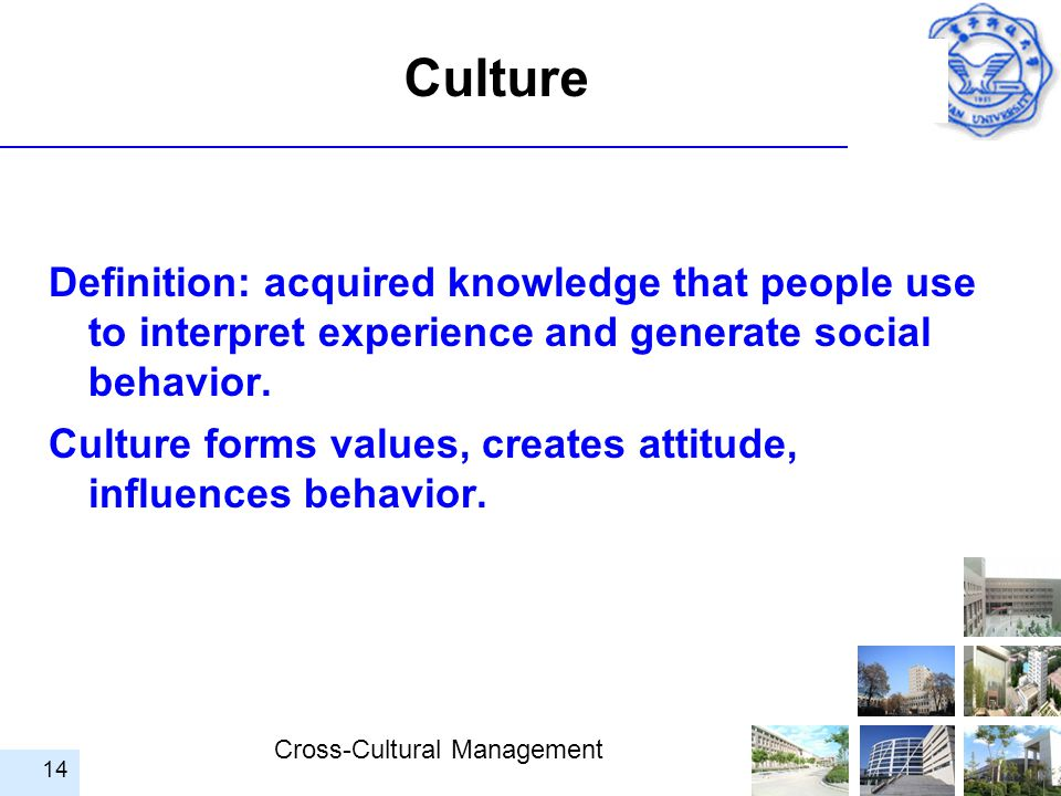 Culture Definition: acquired knowledge that people use to interpret experience and generate social behavior.