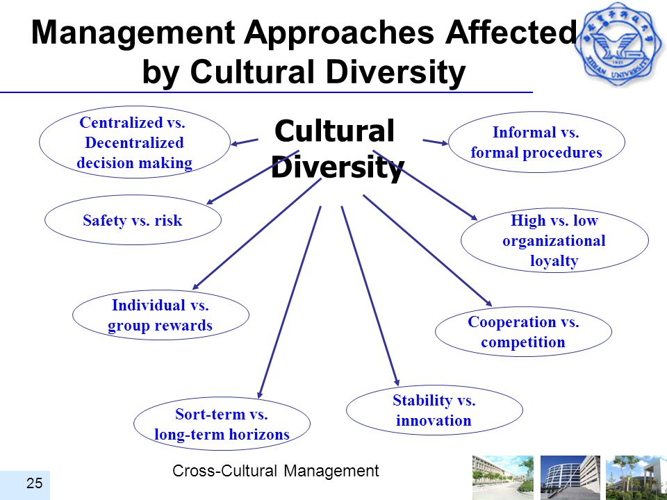 Management Approaches Affected by Cultural Diversity
