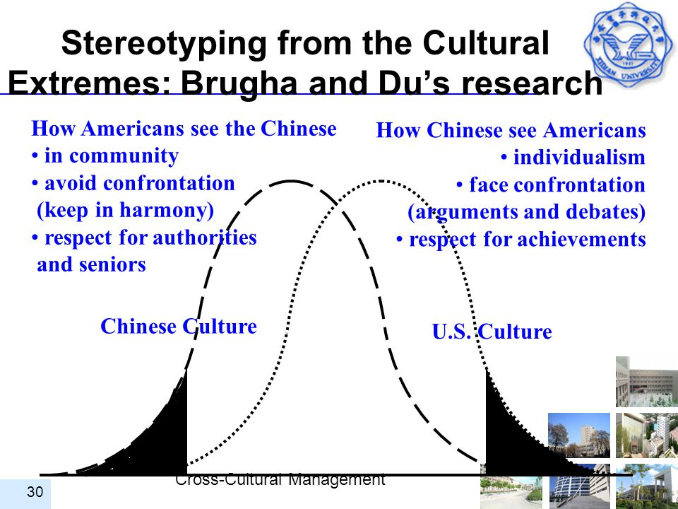 Stereotyping from the Cultural Extremes: Brugha and Du's research