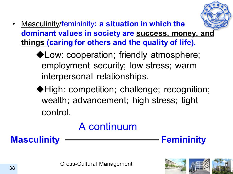 Masculinity/femininity: a situation in which the dominant values in society are success, money, and things (caring for others and the quality of life).