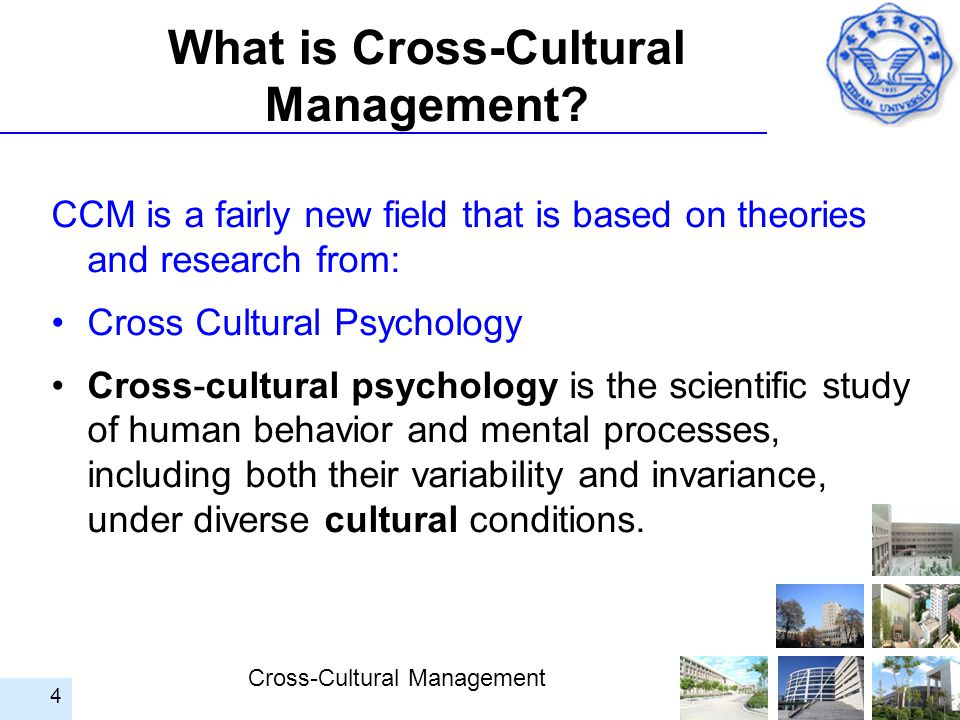 What is Cross-Cultural Management