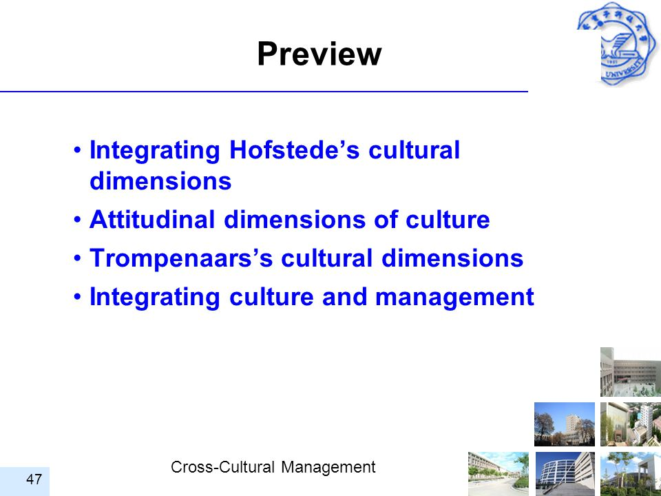 Preview Integrating Hofstede's cultural dimensions