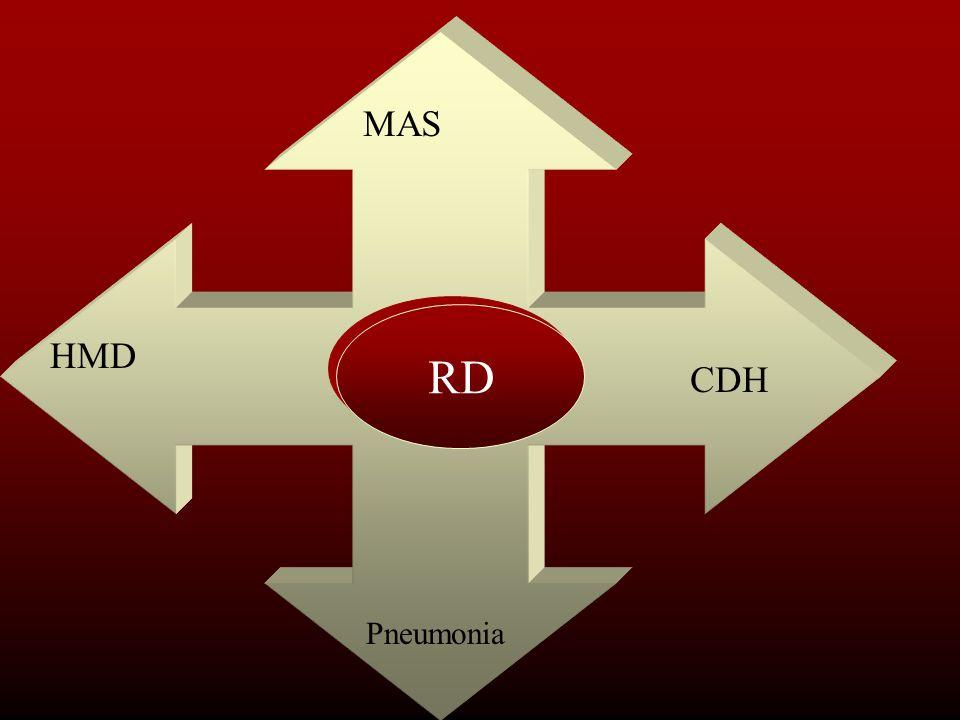MAS RD HMD CDH Pneumonia