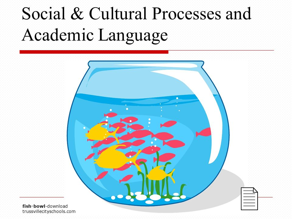 Social & Cultural Processes and Academic Language