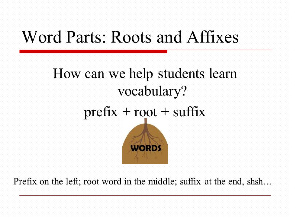 Word Parts: Roots and Affixes