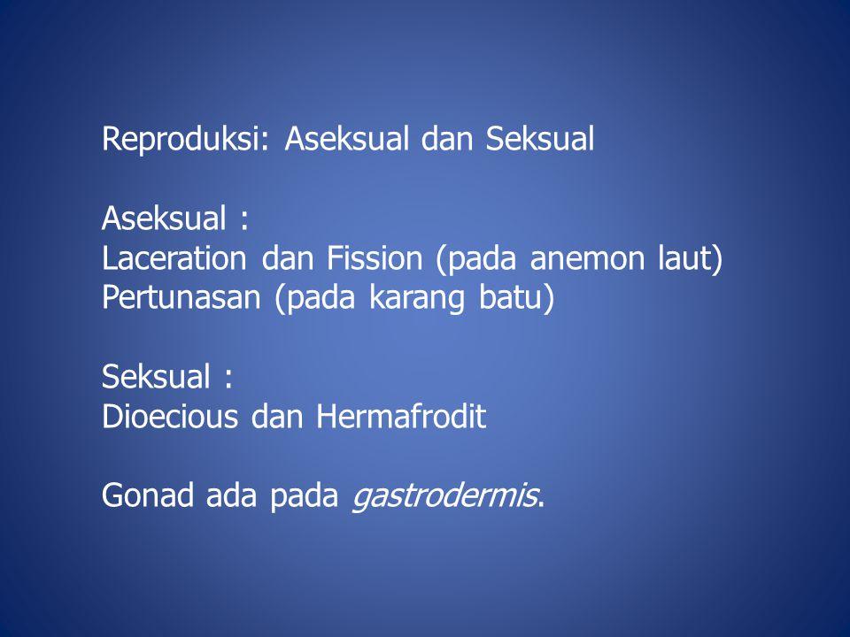Reproduksi: Aseksual dan Seksual
