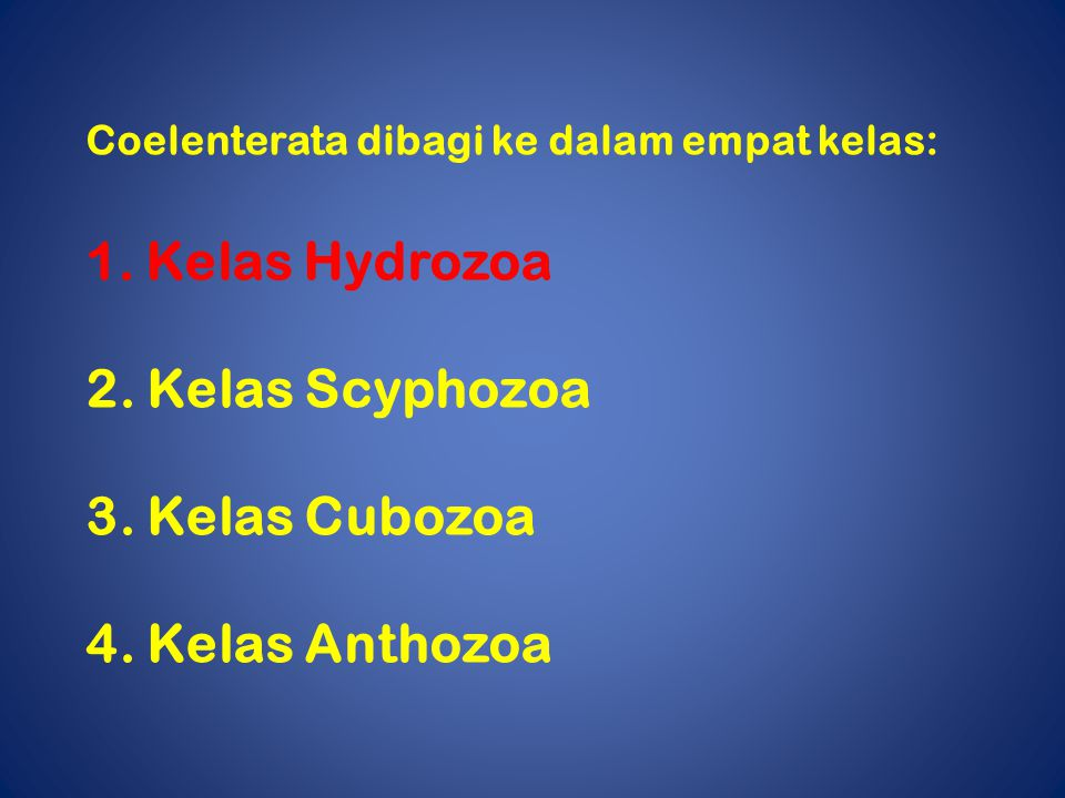 Kelas Hydrozoa 2. Kelas Scyphozoa 3. Kelas Cubozoa 4. Kelas Anthozoa