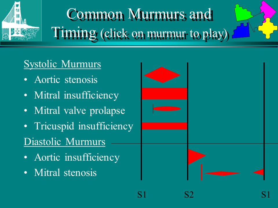 Common Murmurs and Timing (click on murmur to play)