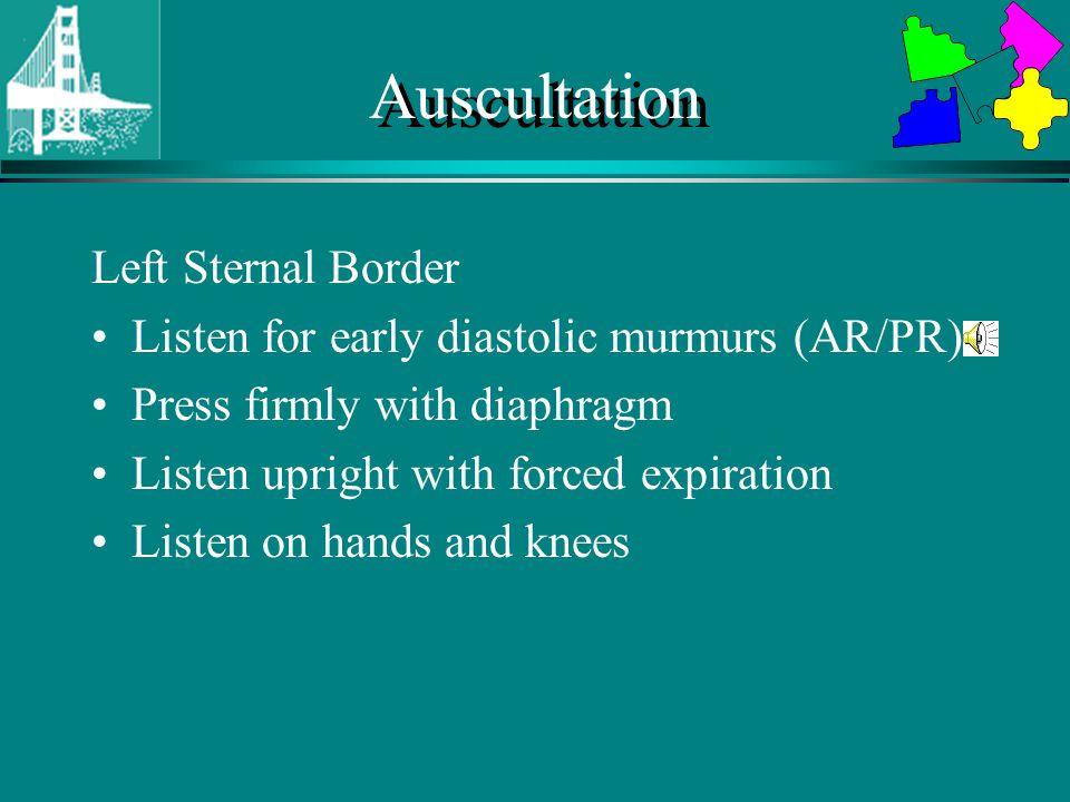 Auscultation Left Sternal Border
