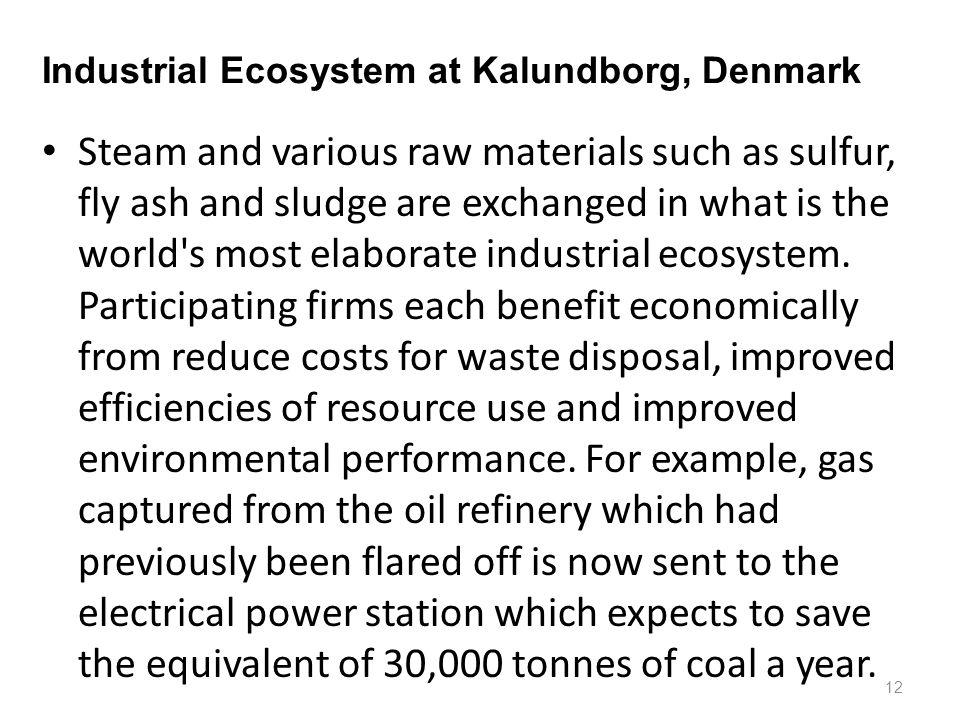 Industrial Ecosystem at Kalundborg, Denmark