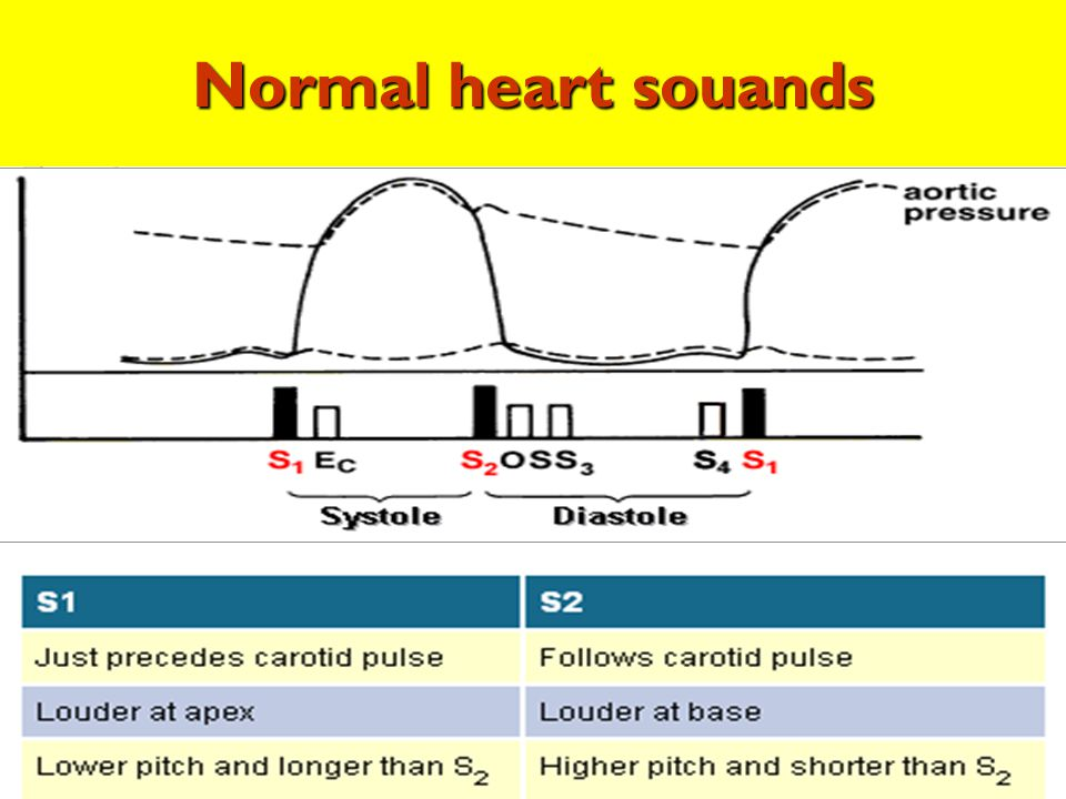 Normal heart souands Normal