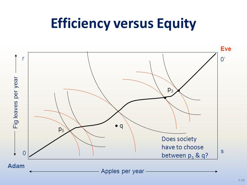 Efficiency versus Equity