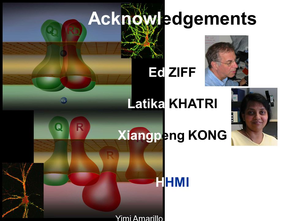 Acknowledgements Ed ZIFF Latika KHATRI Xiangpeng KONG HHMI