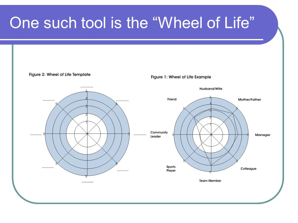 One such tool is the Wheel of Life
