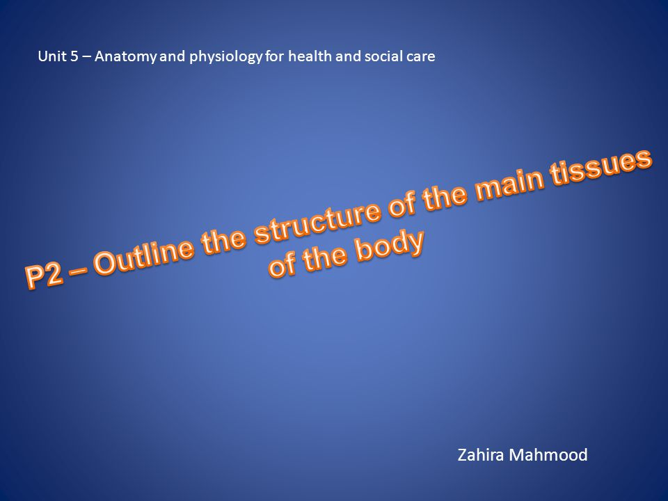 P2 – Outline the structure of the main tissues of the body