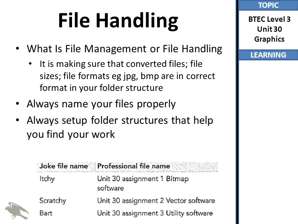 File Handling What Is File Management or File Handling
