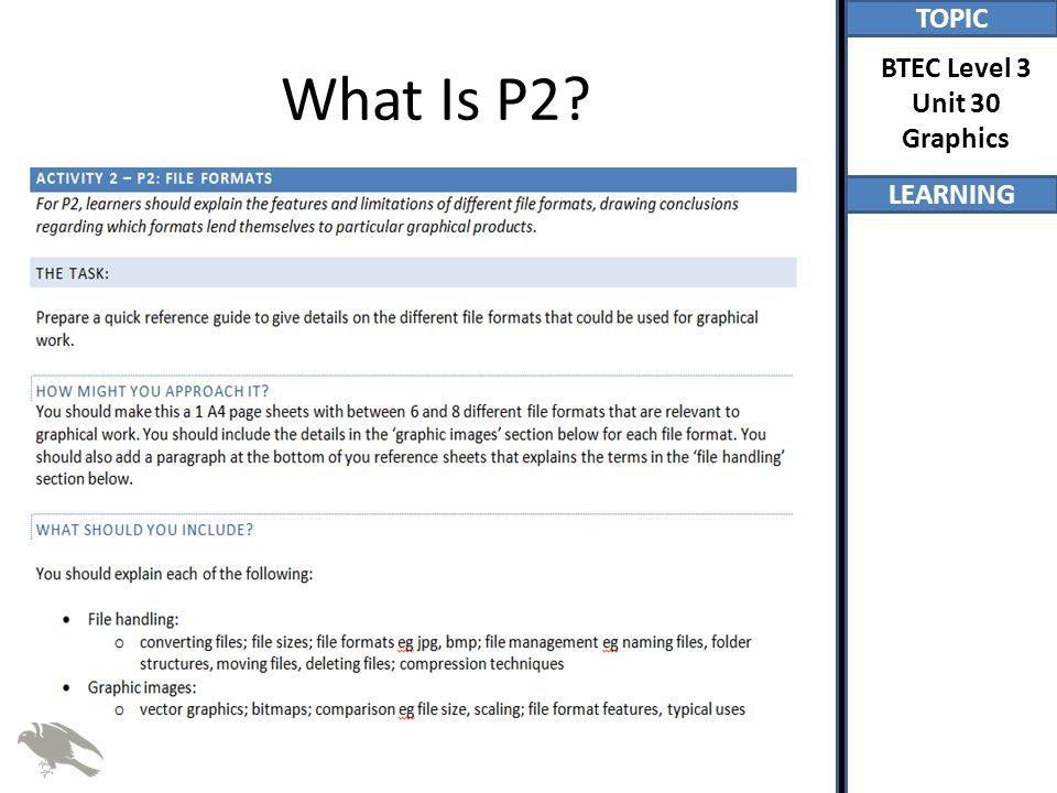 What Is P2
