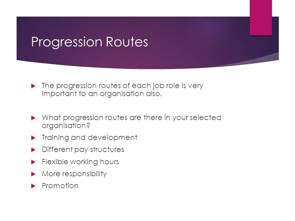 Progression Routes The progression routes of each job role is very important to an organisation also.