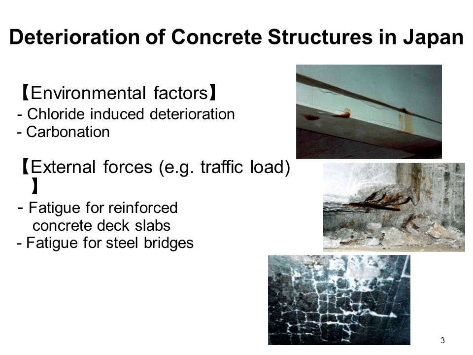 Deterioration of Concrete Structures in Japan