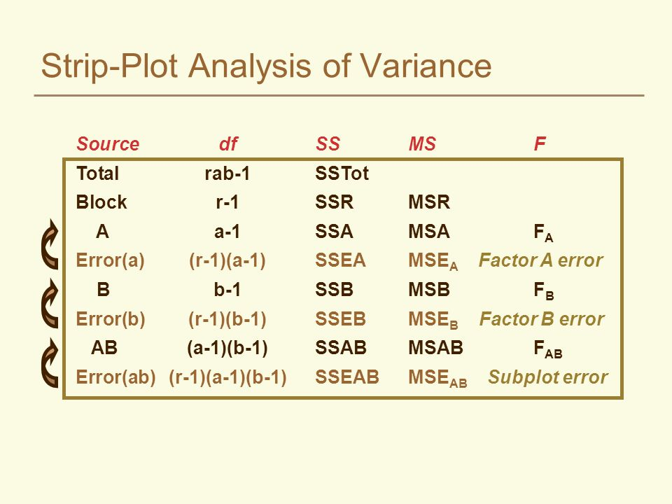 Strip-Plot Analysis of Variance