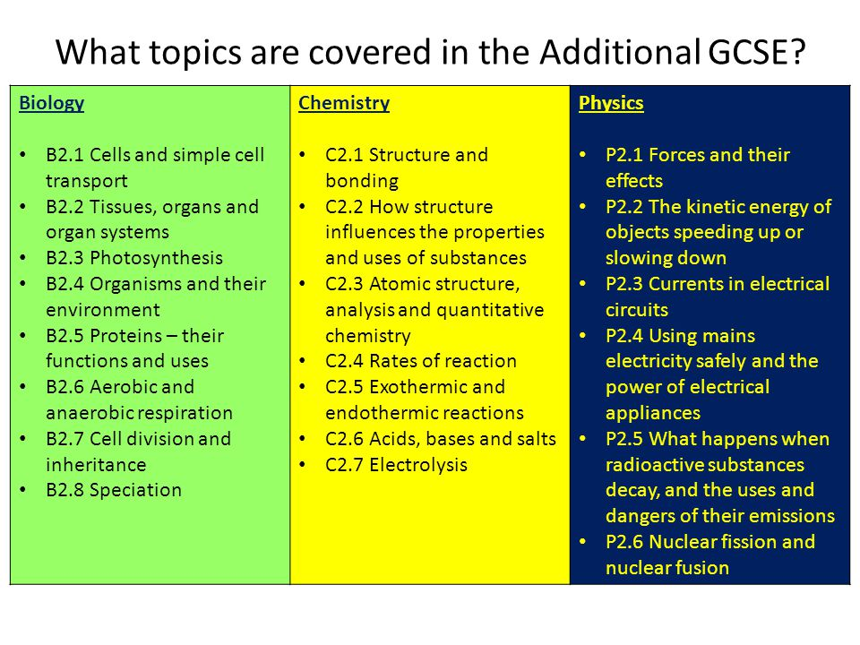 What topics are covered in the Additional GCSE