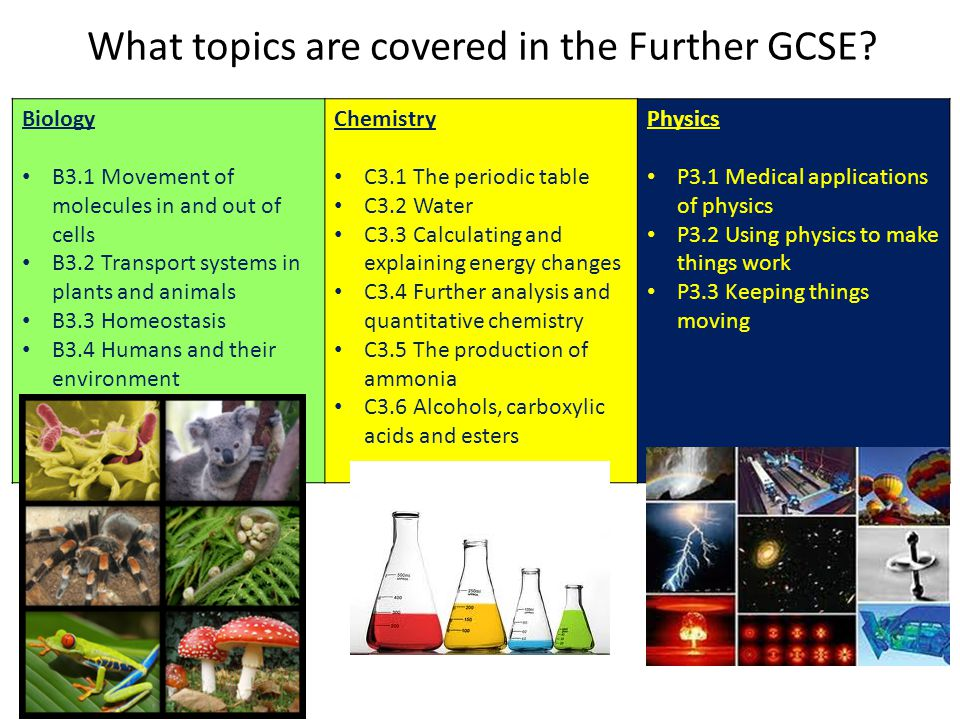 What topics are covered in the Further GCSE
