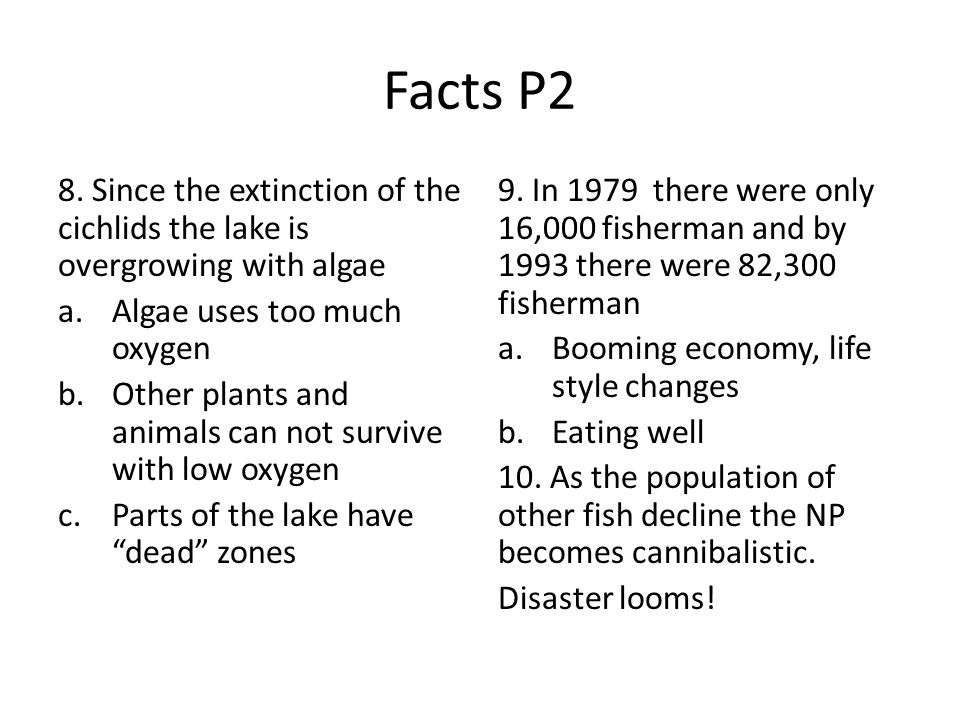 Facts P2 8. Since the extinction of the cichlids the lake is overgrowing with algae. Algae uses too much oxygen.