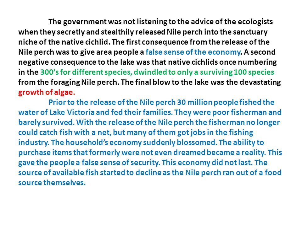 The government was not listening to the advice of the ecologists when they secretly and stealthily released Nile perch into the sanctuary niche of the native cichlid.