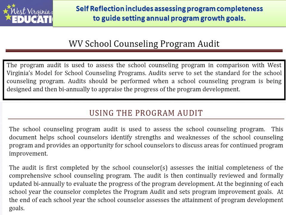 Self Reflection includes assessing program completeness