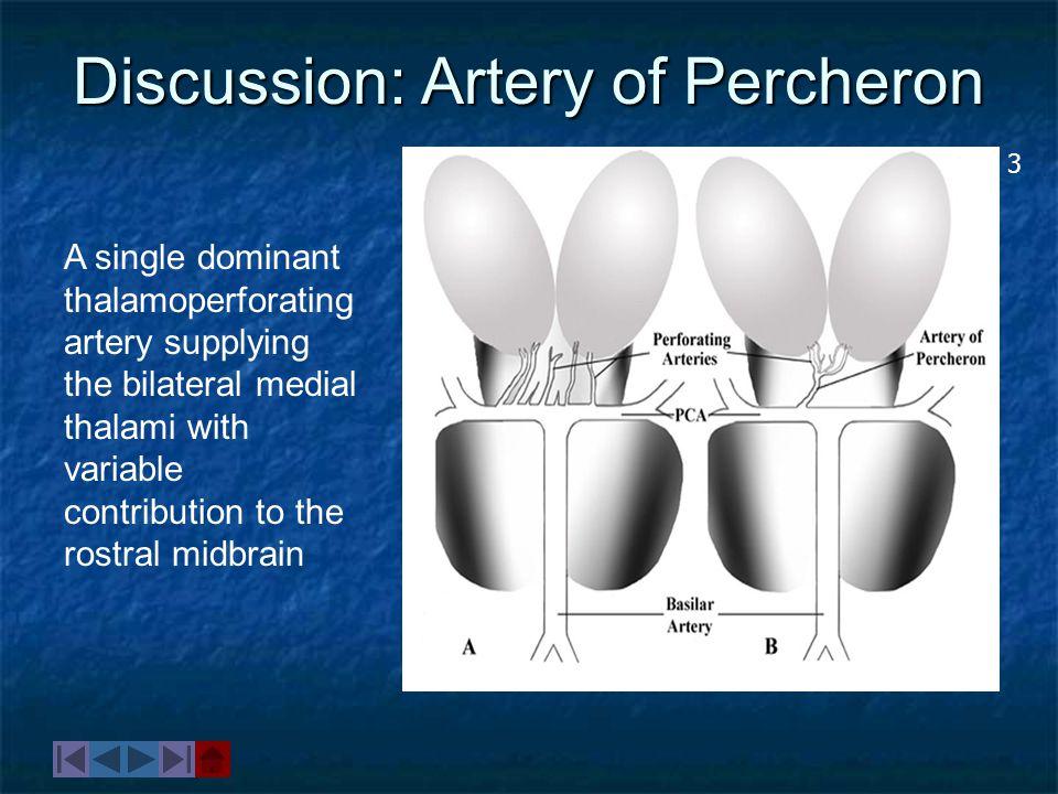 Discussion: Artery of Percheron