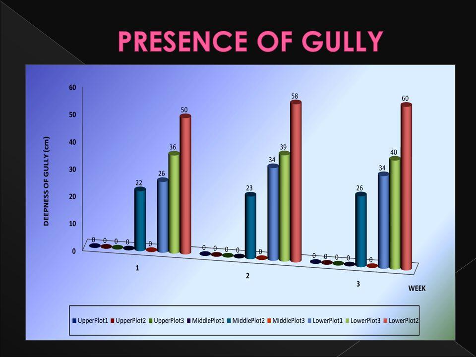 PRESENCE OF GULLY